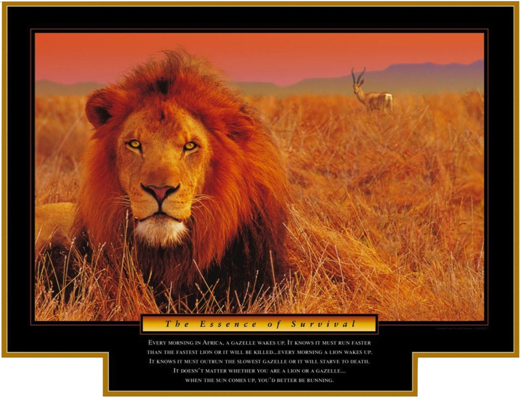 Lion and Gazelle: How to Strategically Create Cornerstone Content that Drives New Revenue